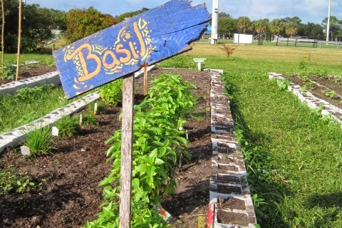 EC Sol Food Grow-Op (Eckerd College)